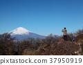 富士山 风景 堆 37950919