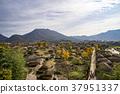 낙안읍성,순천시,전남 37951337