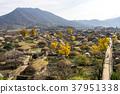 낙안읍성,순천시,전남 37951338