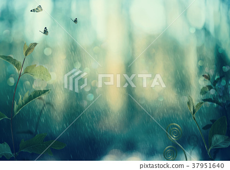 Butterflies and plants in a woods in rain 37951640