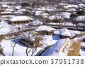 낙안읍성,순천시,전남 37951738