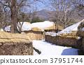 낙안읍성,순천시,전남 37951744
