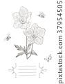 flower, vintage, vector 37954505