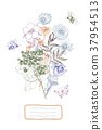 illustration, flower, botanical 37954513