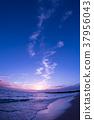 黃昏 海岸 海濱 37956043