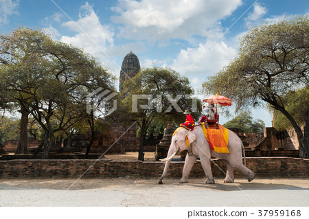 Couple tourists riding elephant ride in Ayutthaya 37959168