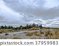 lake, tekapo, new 37959983