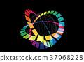 顏色 箍 圓 37968228
