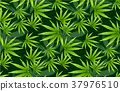 Seamless pattern marihuana leaf herb narcotic. 37976510