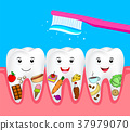 Cleaning food on human tooth,. 37979070