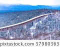 ฤดูหนาว,หิมะ,ฉากหิมะ 37980363