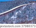 ฤดูหนาว,หิมะ,ถนน 37980373