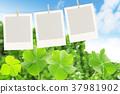 매달아 사진의 테두리와 네 잎 클로버 37981902