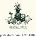 fruits, vector, illustration 37984004