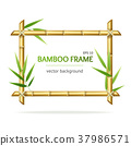 Realistic 3d Detailed Bamboo Shoots Frame. Vector 37986571