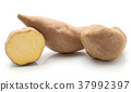 Fresh raw sweet potato isolated on white 37992397