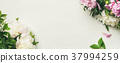 Flat-lay of peony flowers over white background 37994259