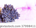 Bunch of lavender flowers on white background 37998411