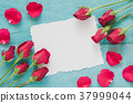 Red rose flowers and blank card. 37999044