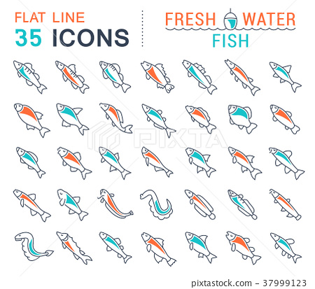 Set Vector Line Icons of Freshwater Fish 37999123