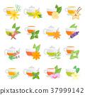 Set Vector Flat Icons of Herbal Tea 37999142