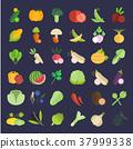 Set Vector Illustration of Vegetables 37999338