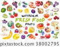 watercolor fruit illustration 38002795