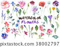 Watercolor flowers illustration 38002797