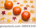 พลับญี่ปุ่น,ต้นเมเปิล,เบอร์รี่ 38004340