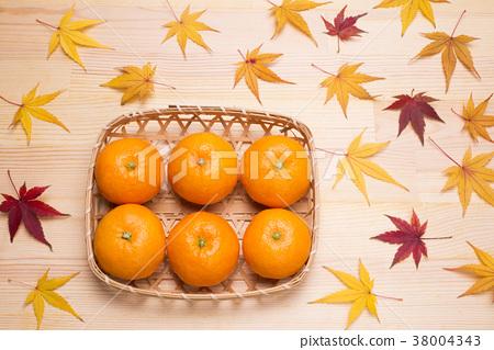 橘子 桔子 蜜柑 38004343
