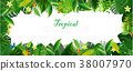 Bright tropical background with jungle plants. 38007970