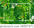 Bright natuer background with jungle plants.  38007971
