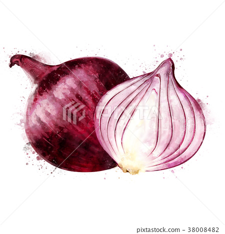 Red Onion on white background. Watercolor 38008482