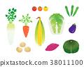อาหาร,ผัก,วัตถุดิบทำอาหาร 38011100