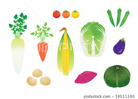 蔬菜 38011100