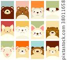 animal, hamster, bear 38011658