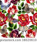 watercolor, colorful, rose 38020610
