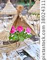 겨울 버튼 피는 후쿠오카시 하코 자키 궁 겨울 이미지 大寒 이미지 입춘 이미지 38024311