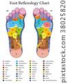 Foot Reflexology Table 38025820