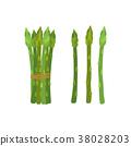 芦笋 蔬菜 原料 38028203