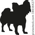 Papillon dog sihouette 38036427