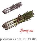 lemongrass, plant, sketch 38039385