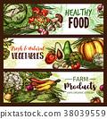 vegetable fruit vector 38039559