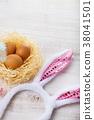 egg, nest, easter 38041501