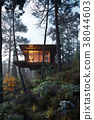 3D Rendering wooden house treehouse in woods twilight 38044603