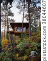 3D Rendering wooden house treehouse in woods morning 38044607
