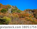 袋田の滝 단풍 축제 38051756
