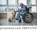 Calm old male on wheelchair stroking the pooch in 38054740