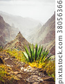 Mountain peak of Xo-xo valley and agaves plants on 38056366