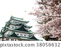 spring, cherry blossom, cherry tree 38056632